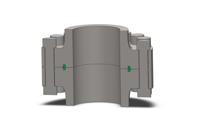 Sectionnal view of a Norsok style compact flange